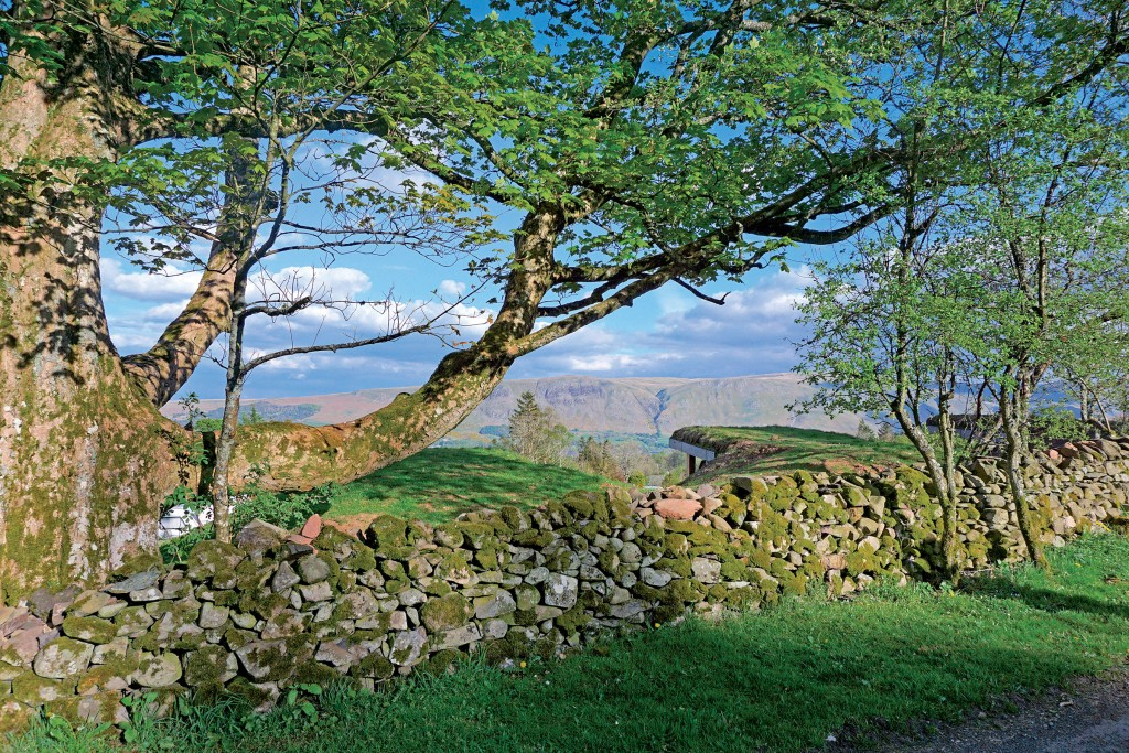 Nordengland Landschaft Lake District bei Ullswater