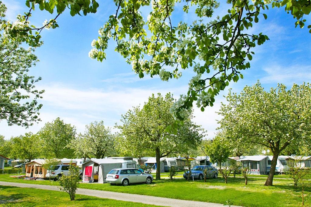Camping Wirthshof