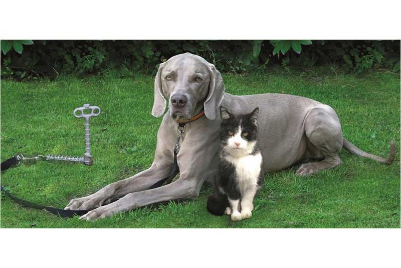 PeggyPeg PetPeg Tierhalterung
